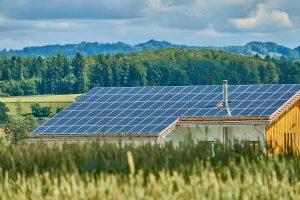 Die eigenen vier Wände nachhaltig und energiesparend ausleuchten – so geht's