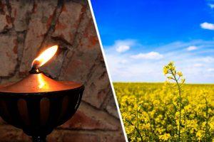 Öllampen - Noch älter als Kerzen ?!