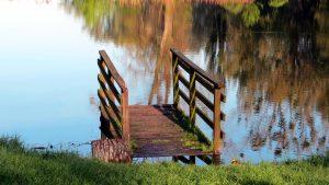 Die eigene Oase im Garten - Die richtige Beleuchtung für den Teich